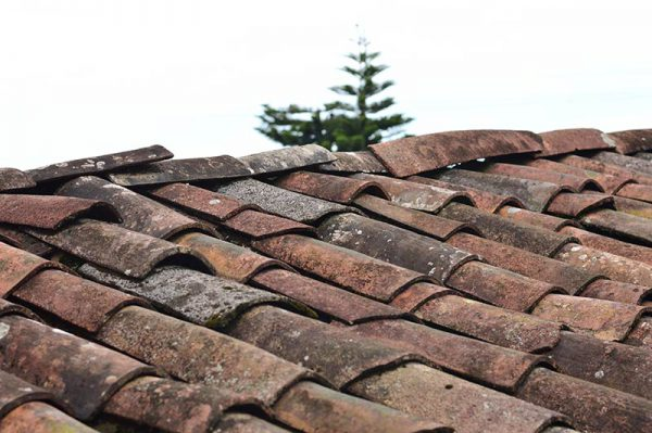 Leaking Roof in Melbourne